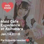 【for foreigners】Maid Cafe Experience
