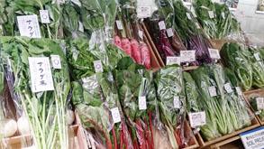 丸の内で働くOLさんにも大人気!サラダに最適な新鮮な野菜が揃っています。