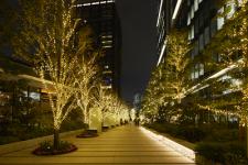 【東京ガーデンテラス紀尾井町】KIOI WINTER~輝きの集い 2018~